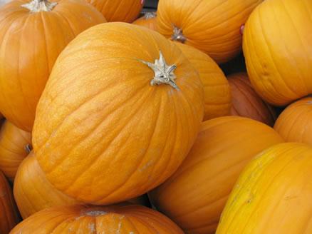 61 Pumpkin Recipes for Thanksgiving