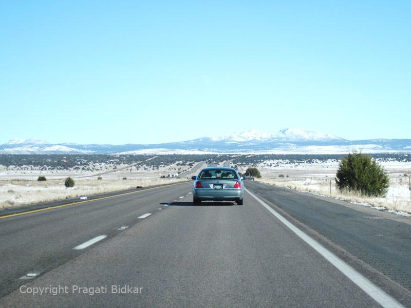 Lodgycal Roadtrip