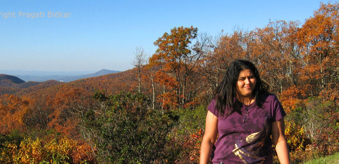 Fall Colors in Shenandoah National Park – Skyline Drive